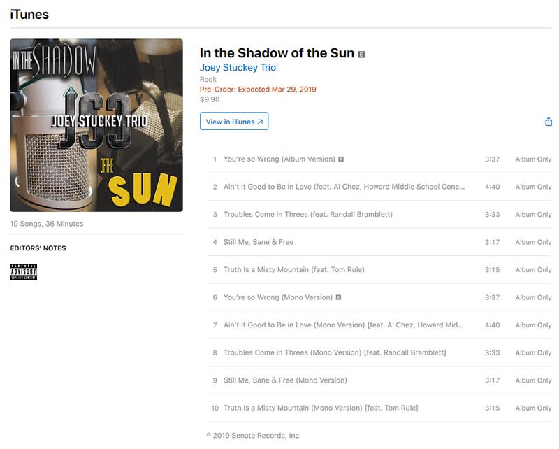 In The Shadow Of The Sun  - iTunes